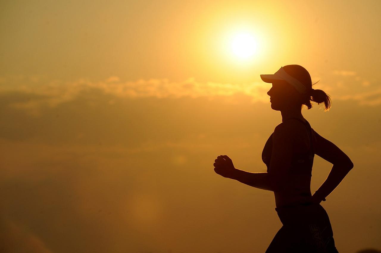 qué es el fitnesss